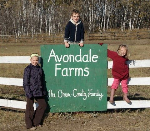 Avondale Farms