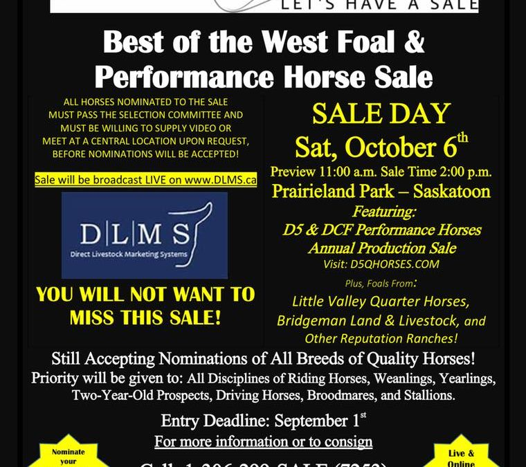 Best of the West Performance Horse Sale