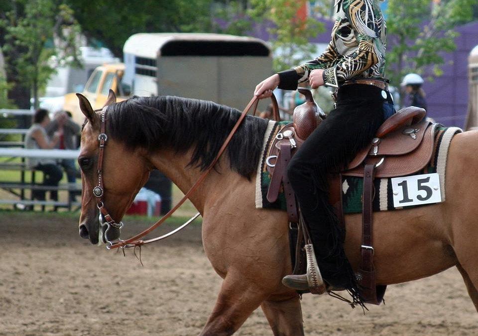 Horsemanship Bootcamp