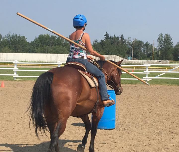 Working Equitation Clinic