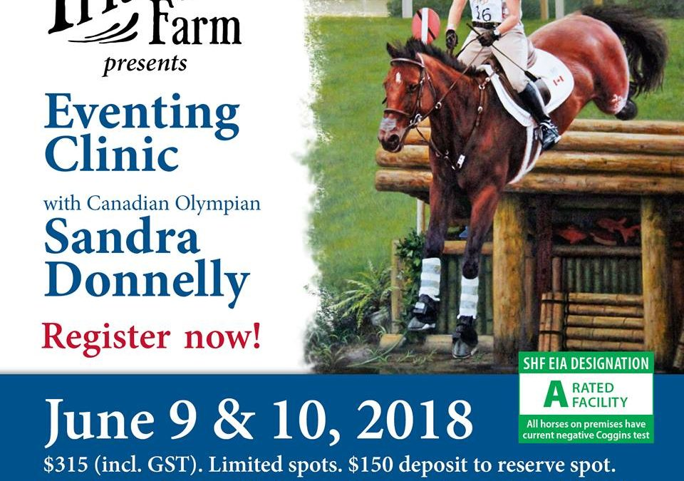 Sandra Donnelly Eventing Clinic