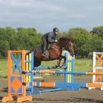 Ace Equestrian Centre