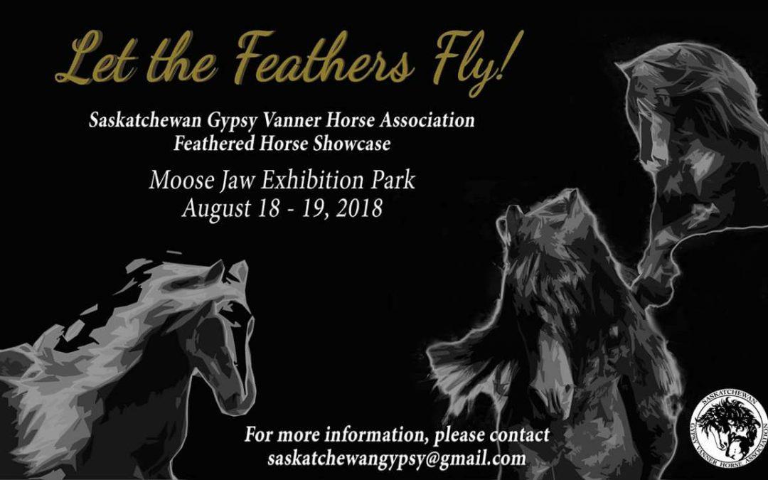 Feathered Horse Showcase