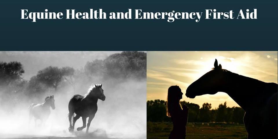 Advanced Equine First Aid