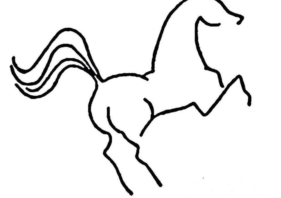 Regina Equestrian Centre Ltd