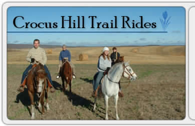 Crocus Hill Trail Rides