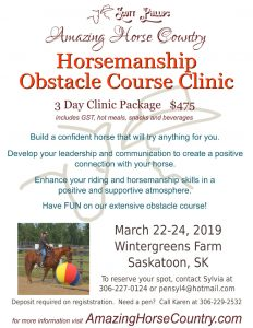 Scott Phyllips Amazing Horse Country Horsemanship Obstacle Clinic Poster
