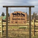 Spruce Side Arena Canwood Logo