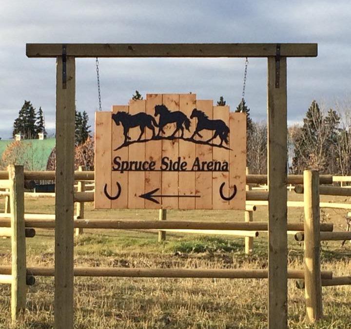 Spruce Side Arena