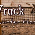 Wruck Quarter Horses Riding Centre Logo
