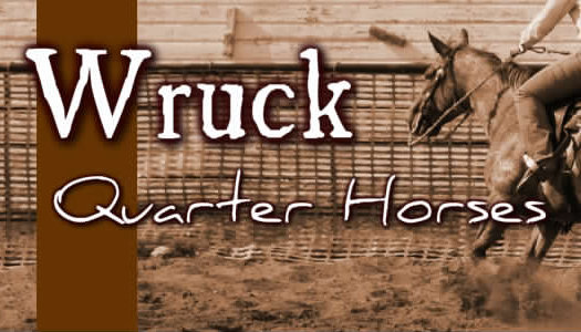 Wruck Quarter Horses and Riding Centre