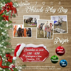 Christmas Trail Challenge Play Day Poster