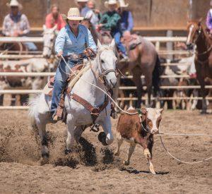 Calf Roping Default Image