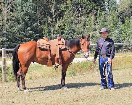 Horsemanship Clinic