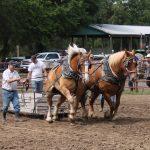 Rosthern Ag Society Fair Grounds