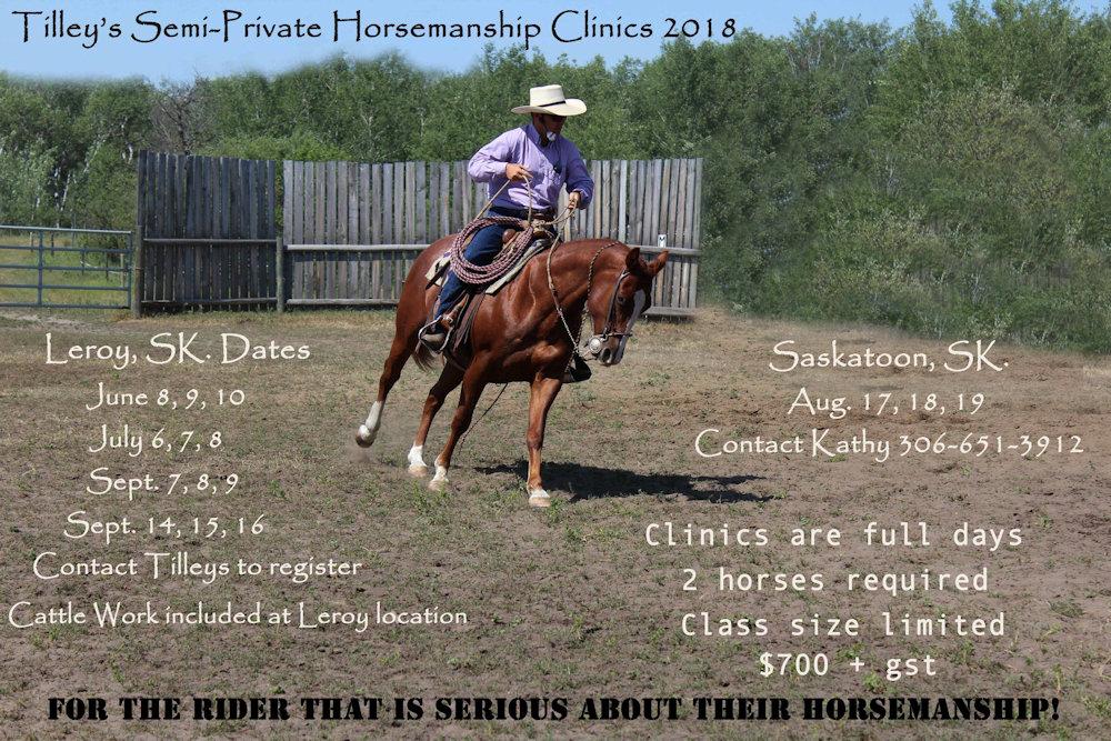 Semi-Private Horsemanship Clinic