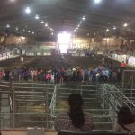Meadow Lake Stampede Grounds