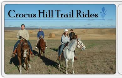 Crocus Hill Trail Rides