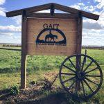 Gait Equestrian & Therapeutic Riding Centre Logo