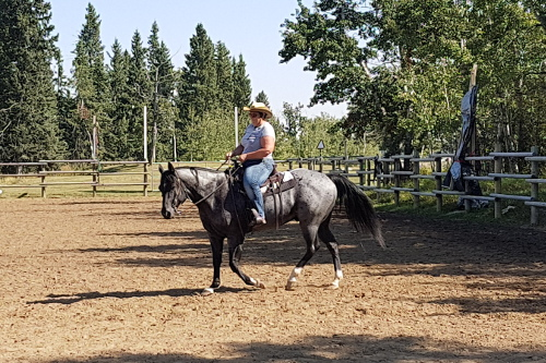 Liberty to Riding Clinic