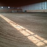 Second Wind Arena Stable Horse Boarding Moosomin Logo