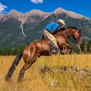 Horsemanship & Reining Clinic
