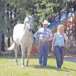 Sabre Quarter Horse Ranch Logo