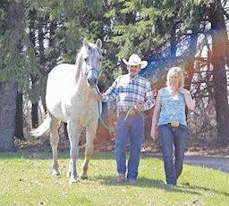 Sabre Quarter Horse Ranch
