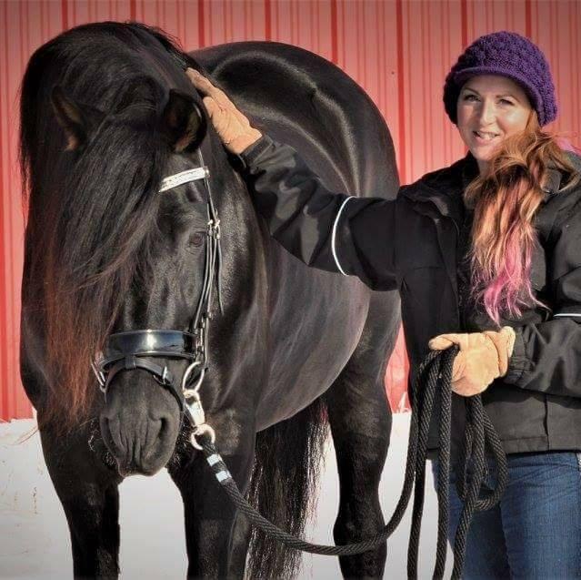Artesian Sands Equestrian