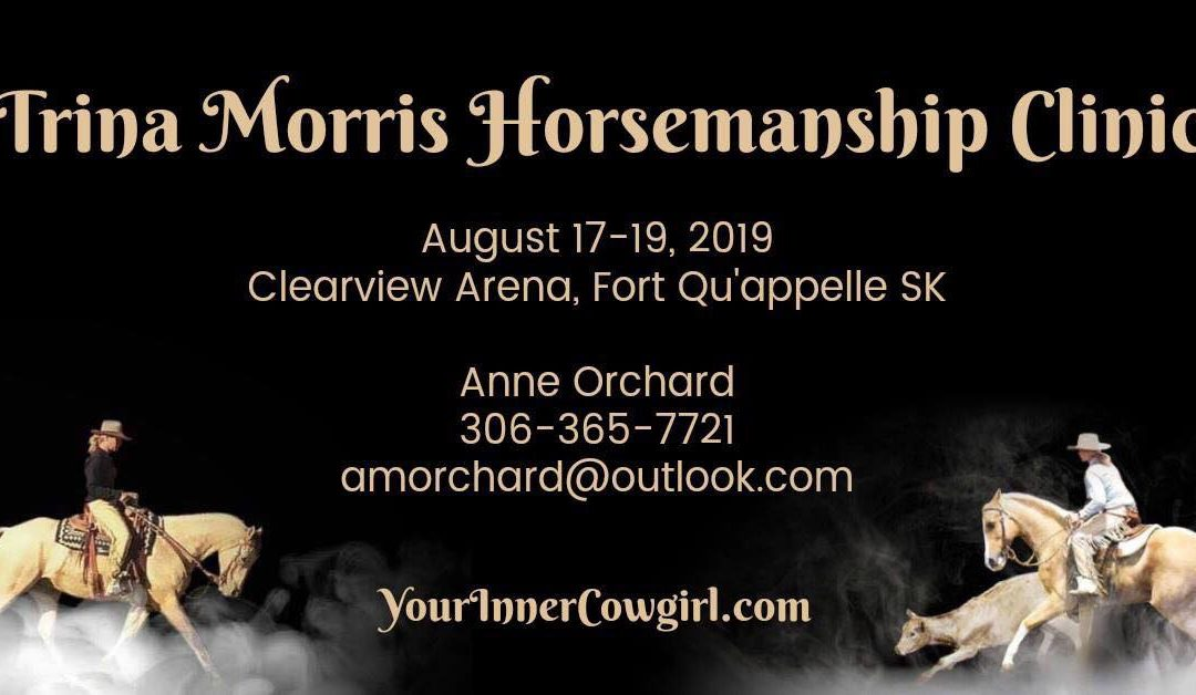 Horsemanship and Cow Working Clinic